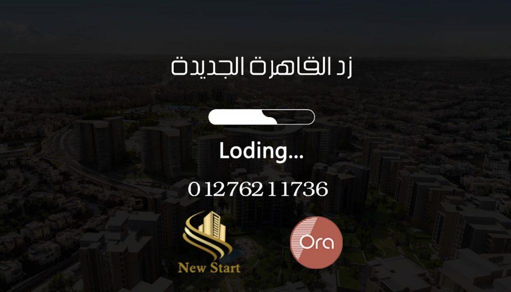 زد القاهرة الجديدة